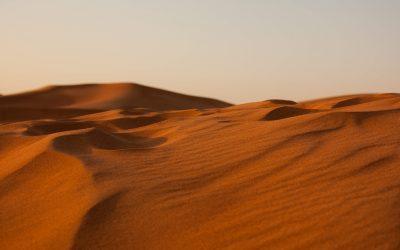 En toen stond ik in de woestijn